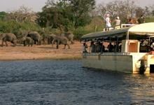 Chobe Safari Lodge, boat cruise
