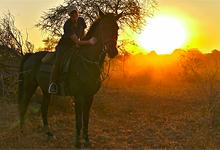Horseback Safaris, near Kruger Park, Wait a Little Safaris