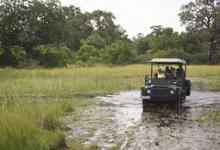 Game drive safari at Xaxanaka Camp